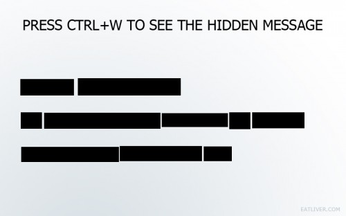press ctrl W to see the hidden message 500x312 press ctrl W to see the hidden message