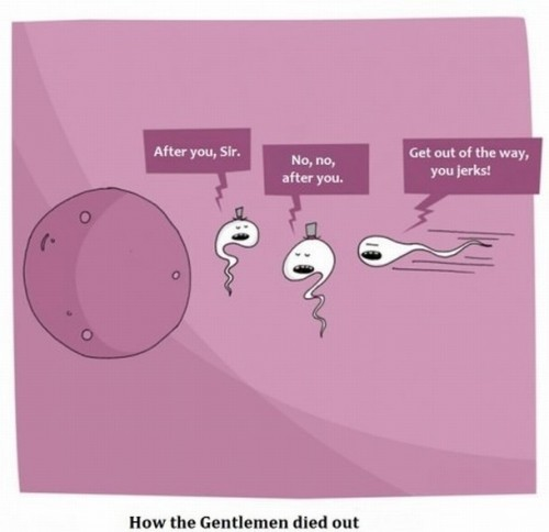 how the gentleman died out 500x484 how the gentleman died out
