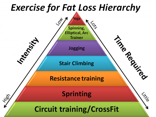 Exercise For Fat Loss Hierarchy