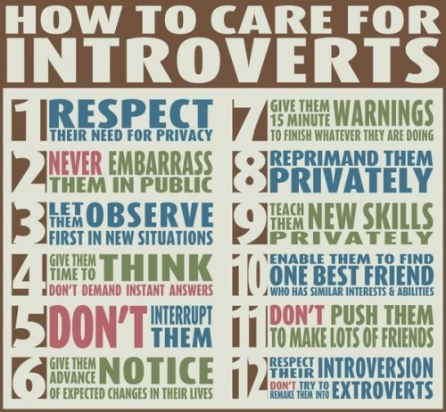 how to care for introverts 500x462 how to care for introverts