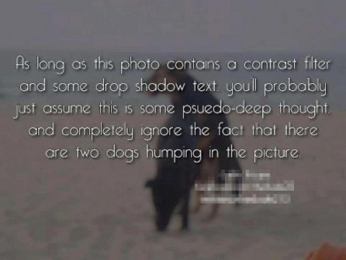 phot with drop shadow text 500x375 phot with drop shadow text