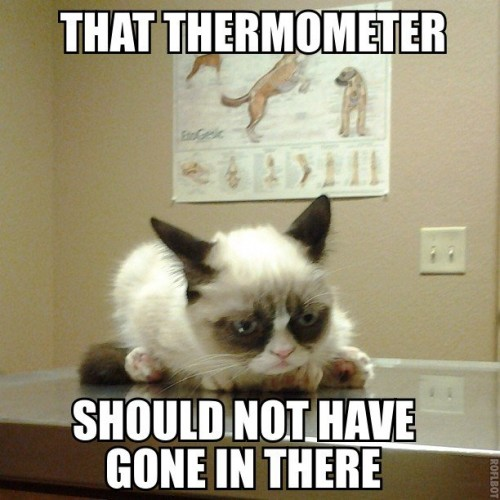 that thermometer should not have gone in there 500x500 that thermometer should not have gone in there