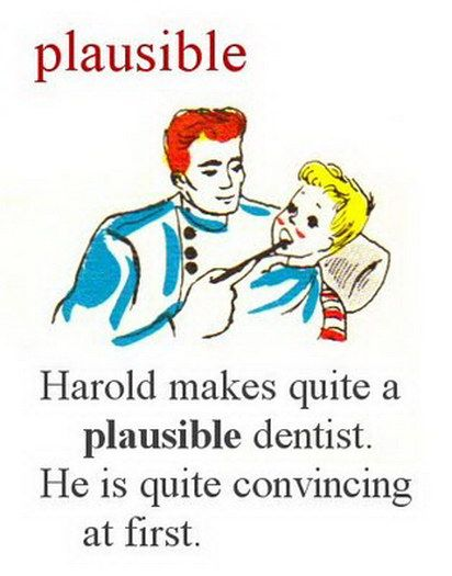 Adult Dictionary – plausible.jpg