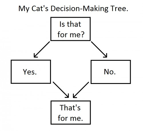 cats decision making tree