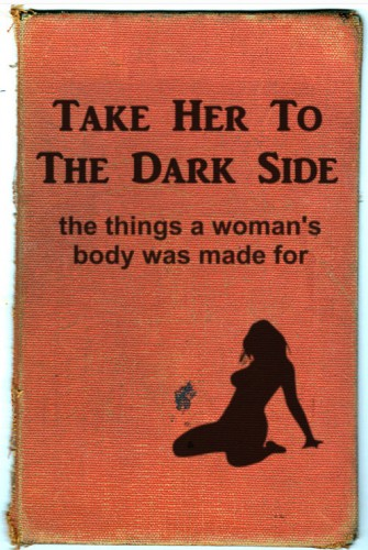 take her to the dark side 335x500 take her to the dark side