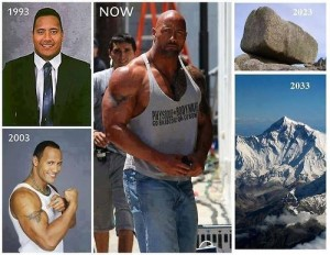 The Rock 300x232 The Rock