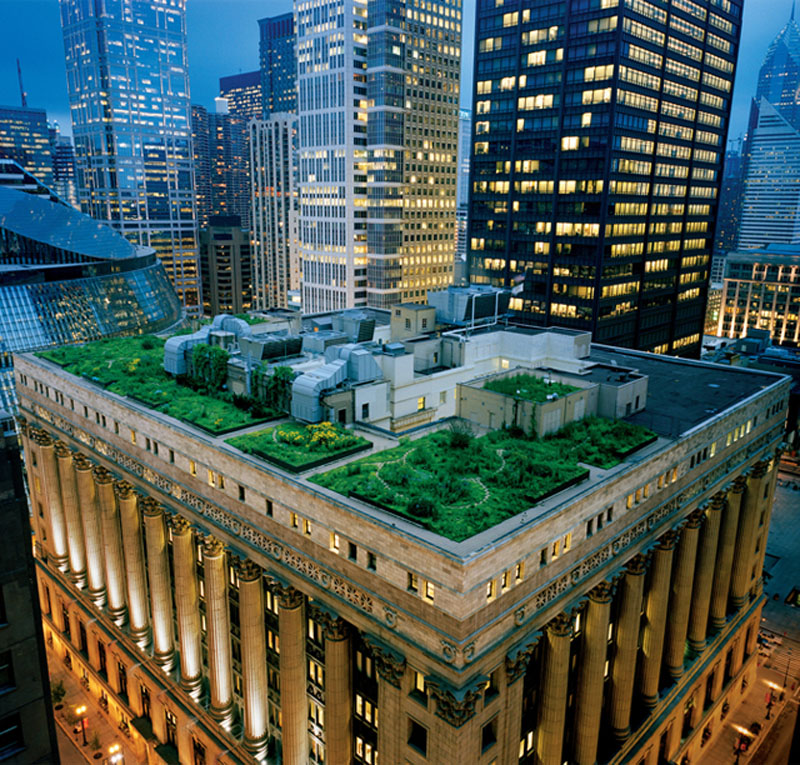 Chicago City Hall Rooftop Garden Chicago City Hall Rooftop Garden