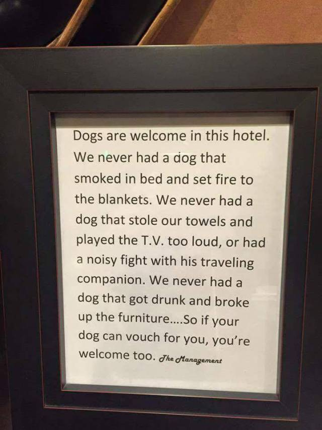 Dogs are welcome Dogs are welcome