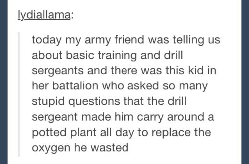 Potted Soldier Potted Soldier