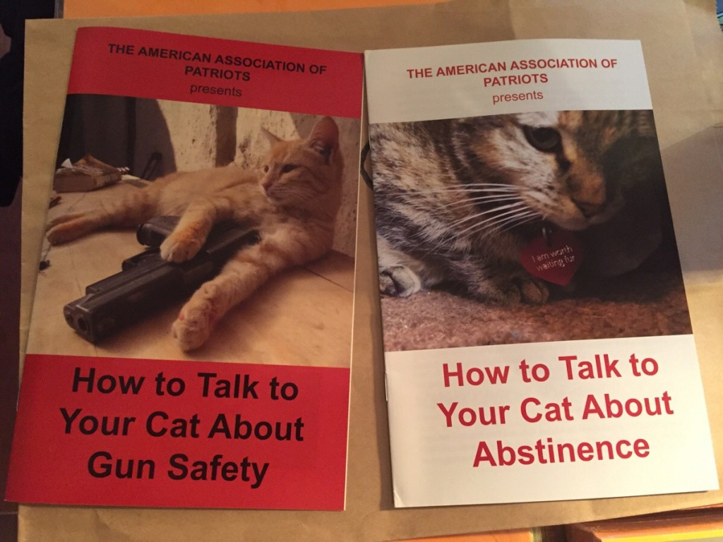 how to talk to your cat 1024x768 how to talk to your cat