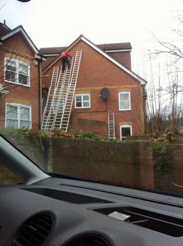 Needs More Ladders Needs More Ladders