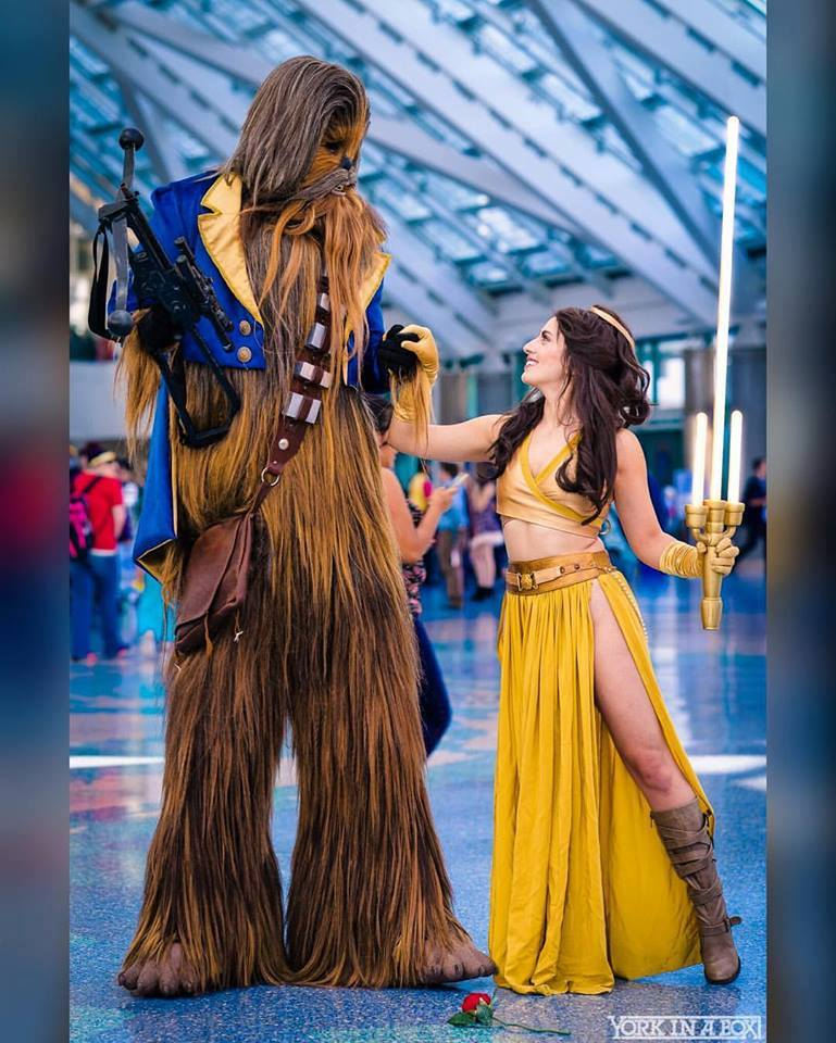 Star Wars Beauty and the Beast Star Wars Beauty and the Beast