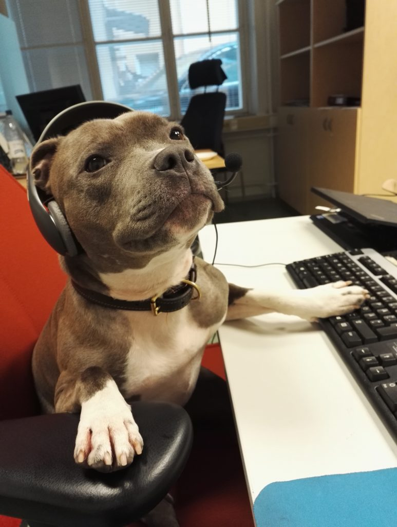 Doggy Tech Support 773x1024 Doggy Tech Support