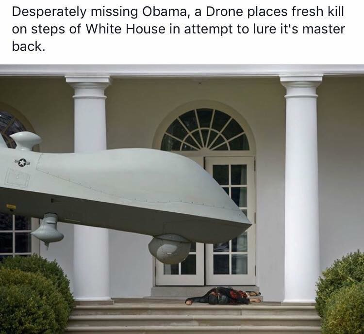 lonely drone lonely drone
