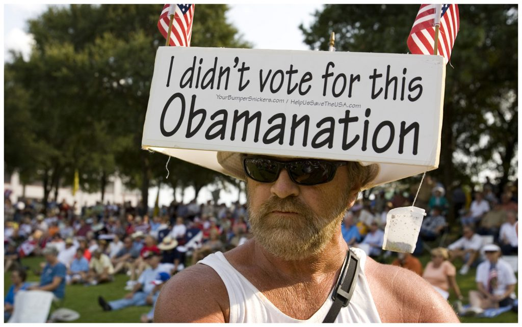 I didn't vote for this Obamanation