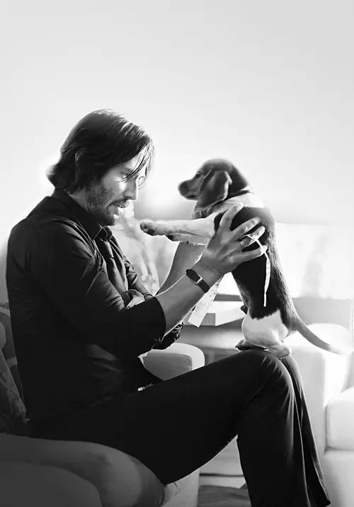 John Wick and his puppy